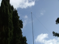 DCI-PI-137-29  THE ANTENNA VERTICAL & DIPOLE FOR 20 MT.jpg